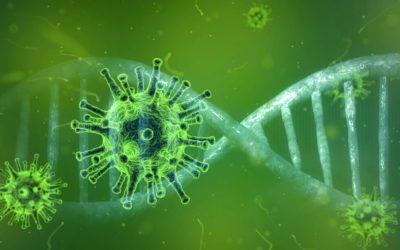 Facciamo ordine: L'Ue ai tempi del coronavirus