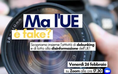 #EuropaCiSiamo Ma l'UE è fake?